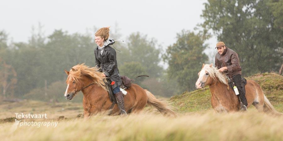 Paardenvierdaagse Zorgvlied 2017
